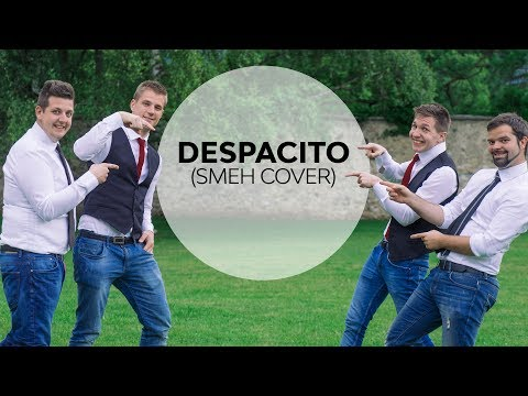 Ansambel Smeh   - Despacito by Luis Fonsi ft. Daddy Yankee/cover