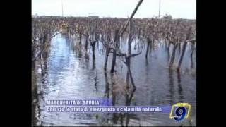MARGHERITA DI SAVOIA | Chiesto lo stato di emergenza e calamità naturale