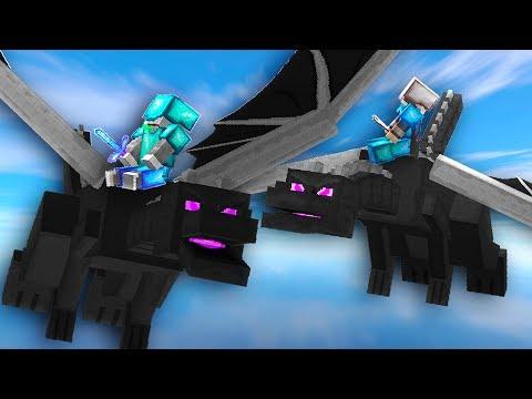 2 Dragon Riders In Skywars