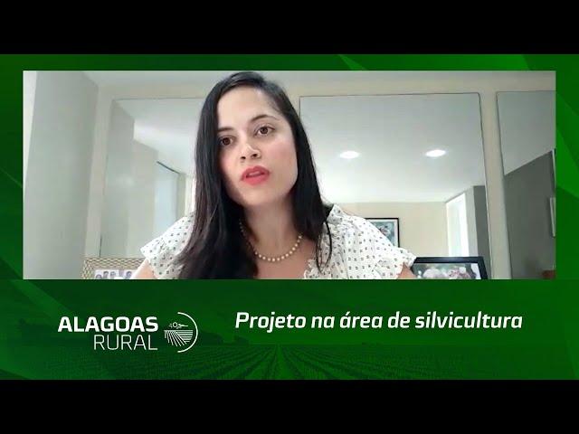 Campo Empreendedor: projeto na área de silvicultura