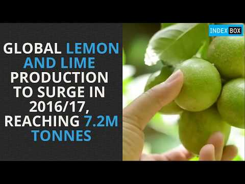 Global Lemon and Lime Production to Surge in 2016/17, Reaching 7.2M Tonnes
