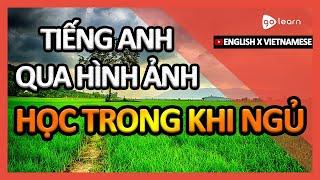 Học Tiếng Anh Qua Hình Ảnh  Từ Vựng Tiếng Anh Học Trong Khi Ngủ   Golearn
