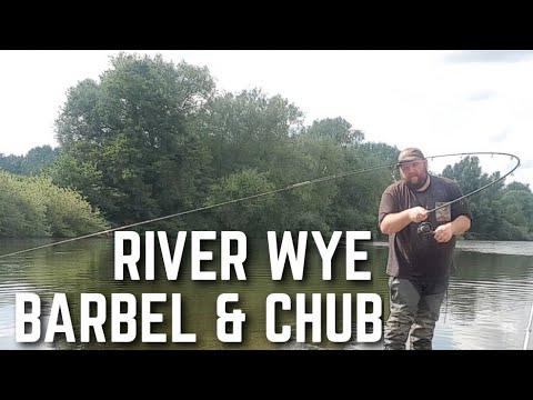 River Wye Barbel And Chub Fishing