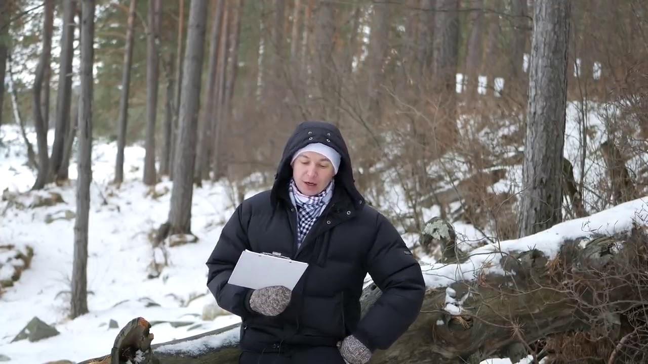Лев Гороскоп на декабрь 2018 Событие 1