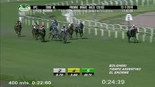 Vidéo de la course PMU PREMIO BRAVE HALO 2010