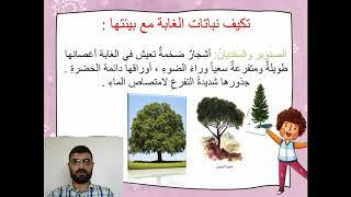 تكيف نباتات اليابسة والنباتات المائية مع بيئتها Youtube