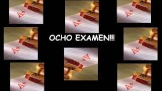 Misheard Maximum the hormone español - hochou hasami -