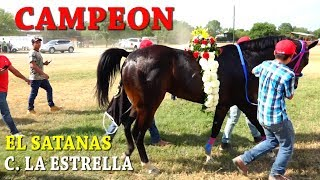 CARRERAS DE CABALLOS **GRAN FINAL FUTURITY** 2018