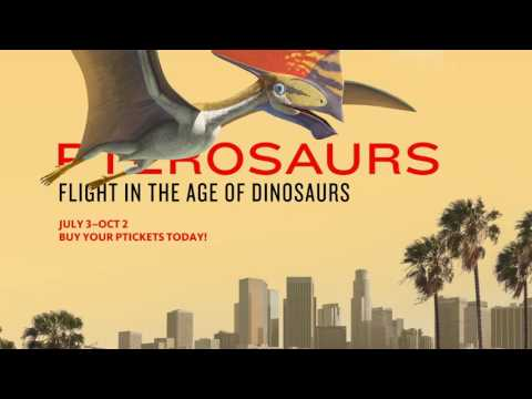 Pterosaurs: Flight in the Age of Dinosaurs at NHM – Downtown L.A.