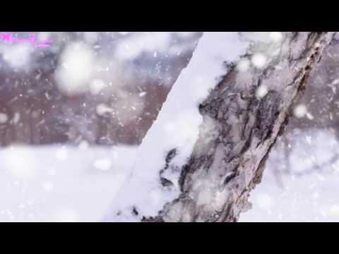 [Kara+Vietsub] Hoa nở hoa tàn - Châu Trị Bình | 花开花谢 - 周治平