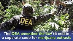 The DEA Classifies CBD Oil to Schedule 1 for No Good Reason