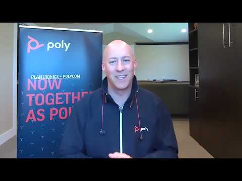 Poly Virtual Solutions Showcase Introduction