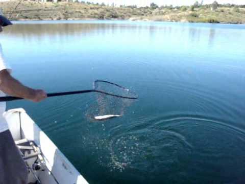 Lake jennings fishing fun on lite tackle youtube for Lake jennings fishing
