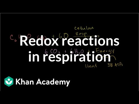 Oxidation and reduction in cellular respiration   Biology   Khan Academy