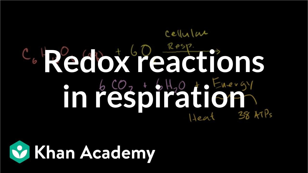 Redox Cell Biology and Genetics Part B