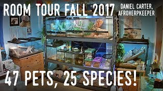 Download Reptile Room Tour Fall 2017 | Tegu, Skink, Boa, Pythons, and DOZENS More! Mp3 and Videos