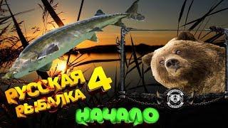 Белуга МедведяКоторая Andquotуронилаandquot сервакРусская Рыбалка 4 топ игра