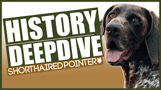 The History Of The GERMAN SHORTHAIRED POINTER