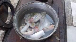 Дачный ответ - Рыбный суп из лосося