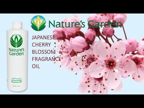 japanese-cherry-blossom-fragrance-oil--natures-garden