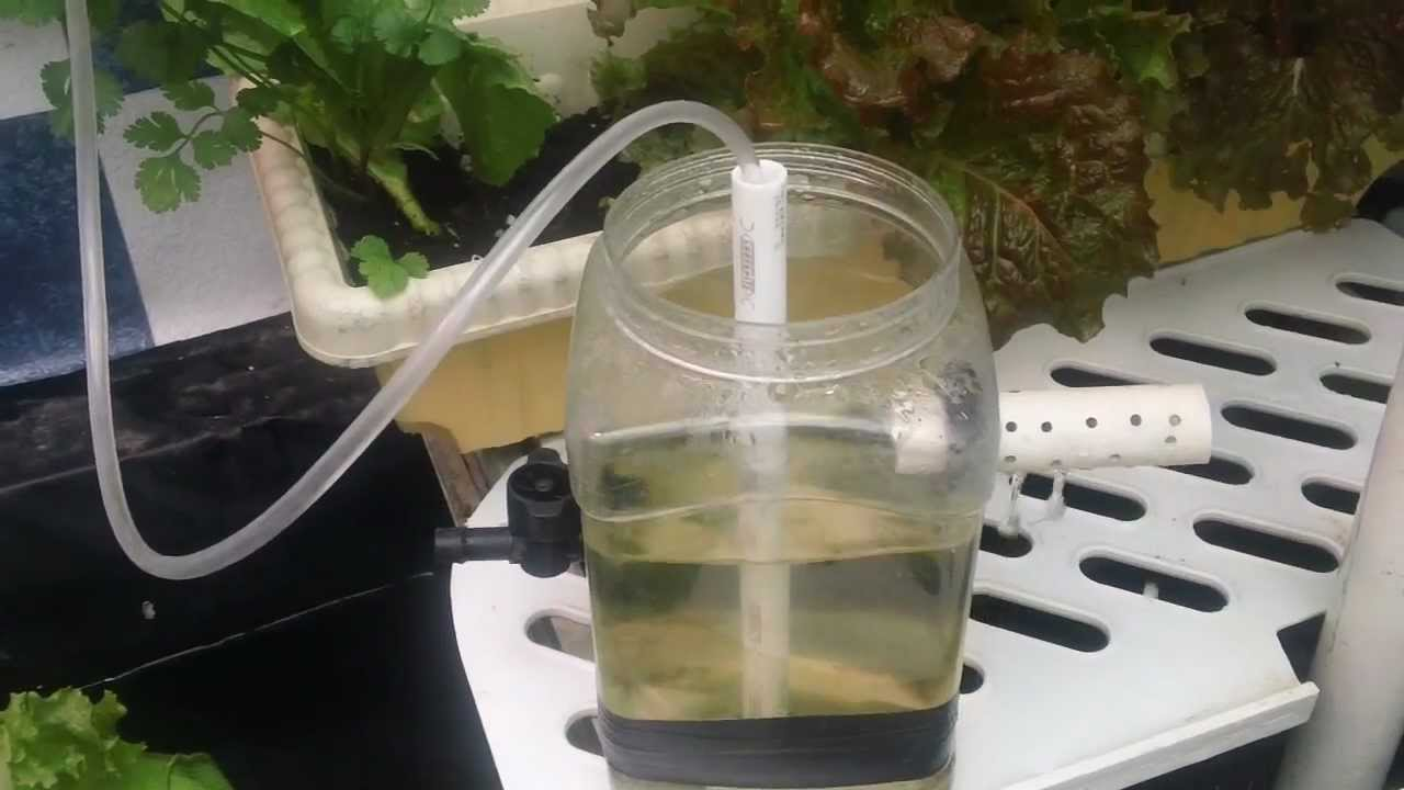 Simple Demonstration Of Grow Bucket Using Airlift Water