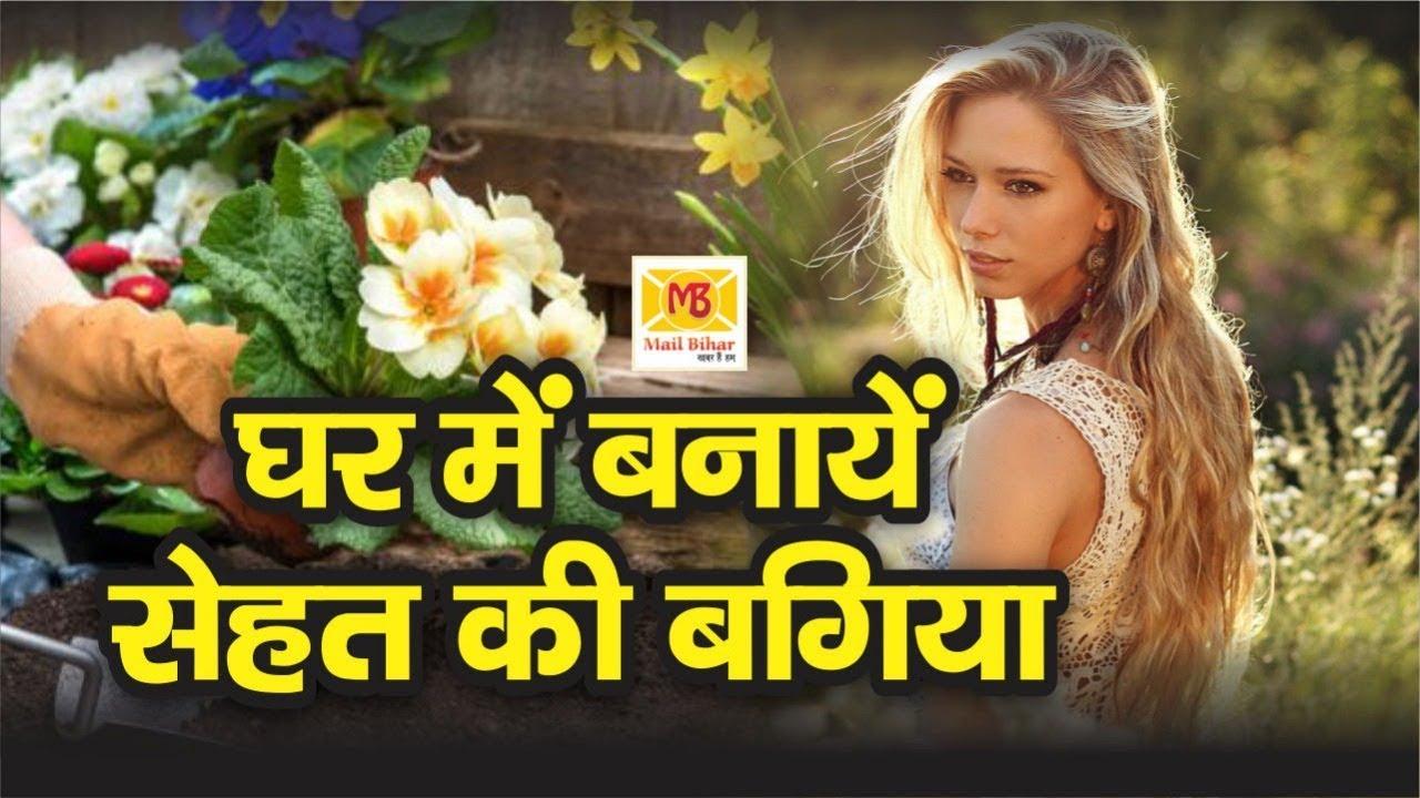 Home Garden में लगाए ये Herbal Plants, Decoration के साथ Health का भी रखेगा ख्याल | Mail Bihar #Herbalmedicine