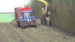 Metcalfe Farms (Lockerbie) Willow Harvest  gtritchie5