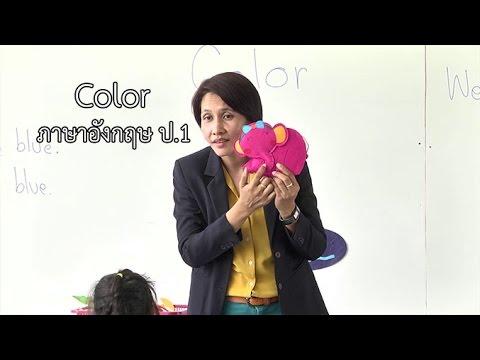 ภาษาอังกฤษ ป.1 Color ครูนงเยาว์ ลือขจร