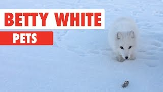 Betty White Pets