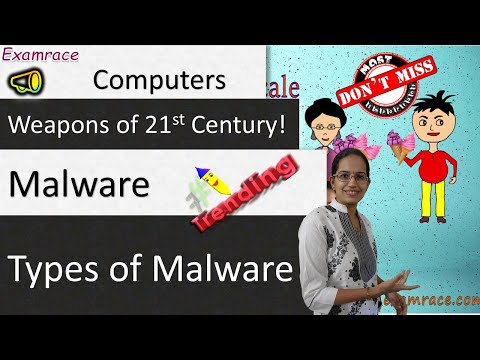 Computer Malware & Types Of Malware - Weapons Of 21st Century!