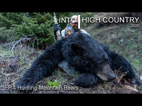 Hunting Mountain Bears