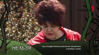 «Первый Тульский» приглашает «На дачу к Ирине Цветаевой»  Премьера
