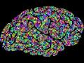 Best vitamins for your brain - Neuro, Energy, Sleep, Core Essentials, Renew