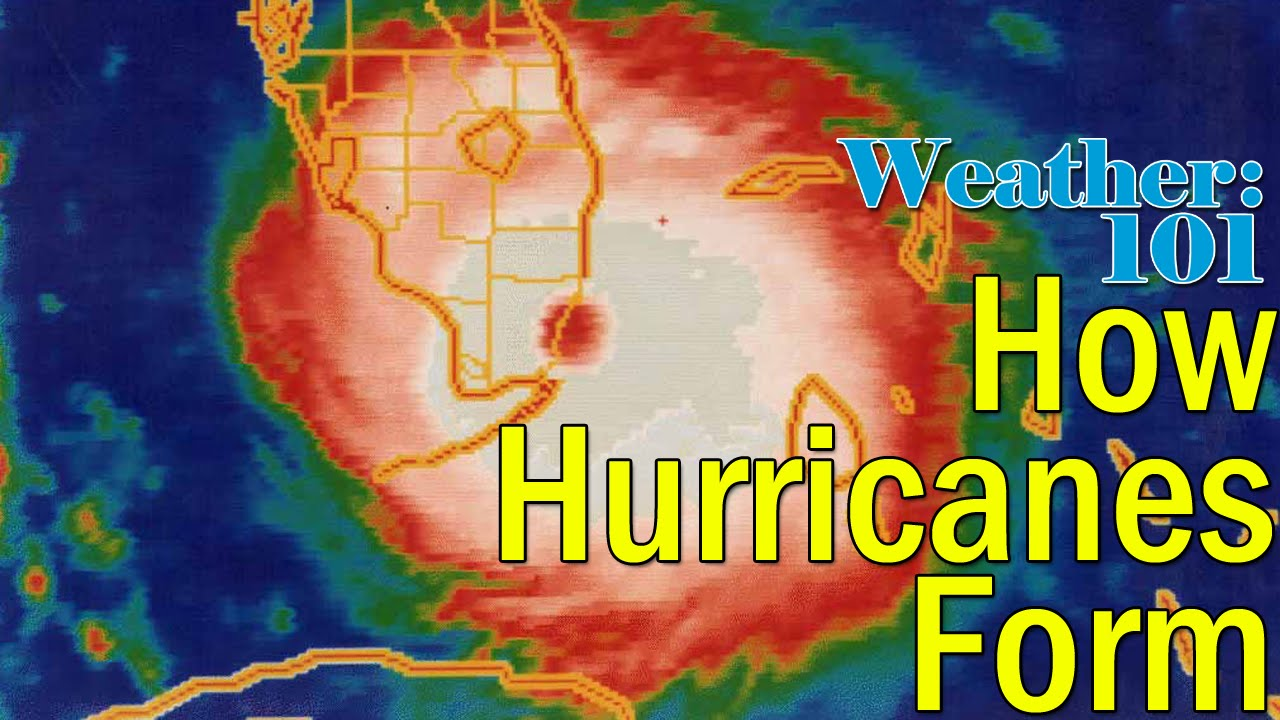 Weather 101: How do hurricanes form? - YouTube