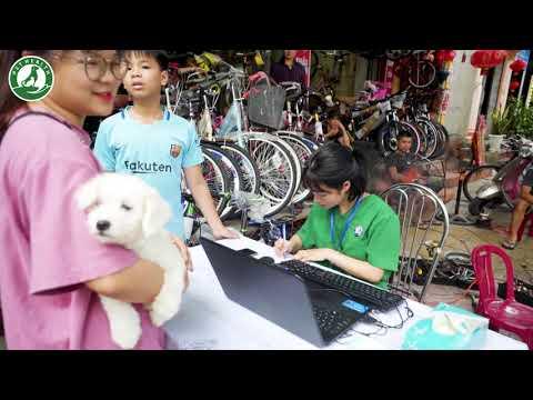 Huấn luyện pet cùng chuyên gia   PetHealth Ninh Bình