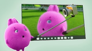 Cartoons for Children | SUNNY BUNNIES - THE BIG SCREEN | Funny Cartoons For Children