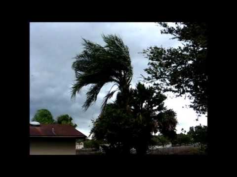 Strong Gusts at Greater Carrollwood, Florida.