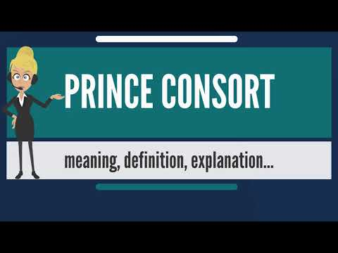 What is PRINCE CONSORT? What does PRINCE CONSORT mean? PRINCE CONSORT meaning & explanation