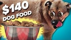 $10 Dog Food Vs. $140 Dog Food