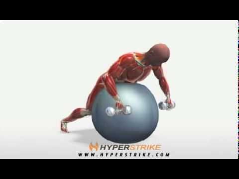 Exercise Videos- Dumbbell Row on Ball