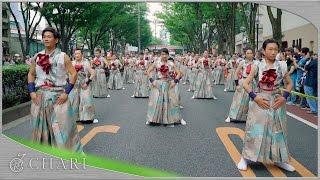 【4K】天空しなと屋 ちょんまげ|JAPAN SPIRITS(原宿表参道元氣祭スーパーよさこい2016 表参道) thumbnail