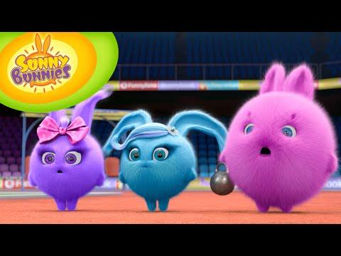 Cartoon ★ Sunny Bunnies ★ OLYMPICS SPECIAL 🏆 ★ Cartoons for Children ⚽ ⚾ 🏈