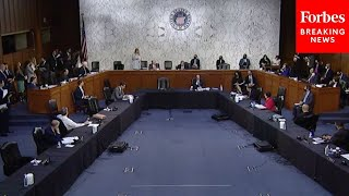 Senate Holds Hearing On Congressional Oversight And Executive Privilege