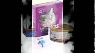 самый лучший корм для кошек(http://vk.cc/35ppYT Крупнейший интернет-магазин товаров для ваших домашних любимцев.Огромный ассортимент, доступн..., 2014-10-26T16:09:49.000Z)