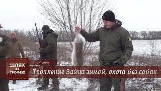 Тропление Зайца зимой, охота без собак. [Шлях до Трофею №4]