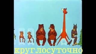 Ветклиника Диана вет в Запорожье, вакцинация животных