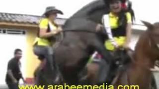 مضحك جداً جداُ  حصان متنشط كتير