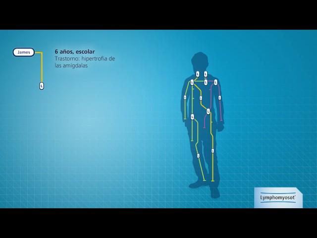 alcachofa para adelgazar en inyecciones de neurobion