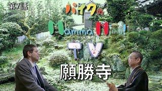 マンマミマ TV - 第七話 - 願勝寺 【徳島県美馬市の文化】