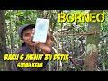 Jos Kapas Tembak Sobo Wono  Ll Borneo  Mp3 - Mp4 Download